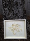 Image of Framed Lithograph: Shoal Creek II