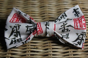 Image of Asian Persuasion -BowTie