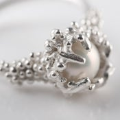 Image of Captured Pearl Ring.