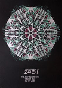 Image of Zeus!