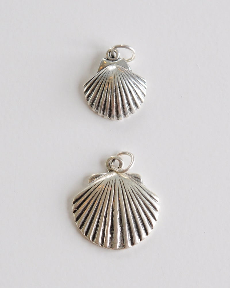 Image of Shell - Scallop