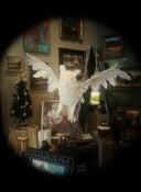 """Image of """"Take Flight"""""""