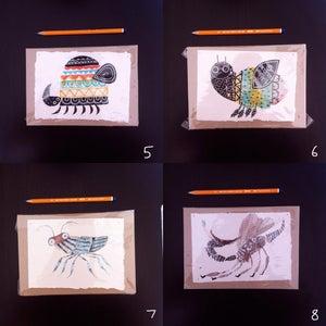 Image of Bugs (B)
