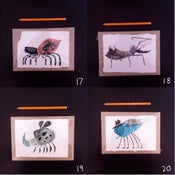 Image of Bugs (E)