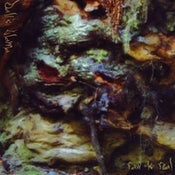 Image of Dali's Llama - Raw is Real CD