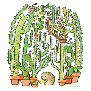 Quilliam's Cactuses
