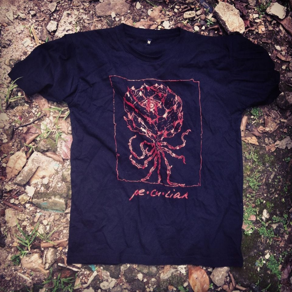 Image of pe•cu•liar shirt