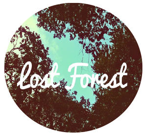 Image of Lost Forest