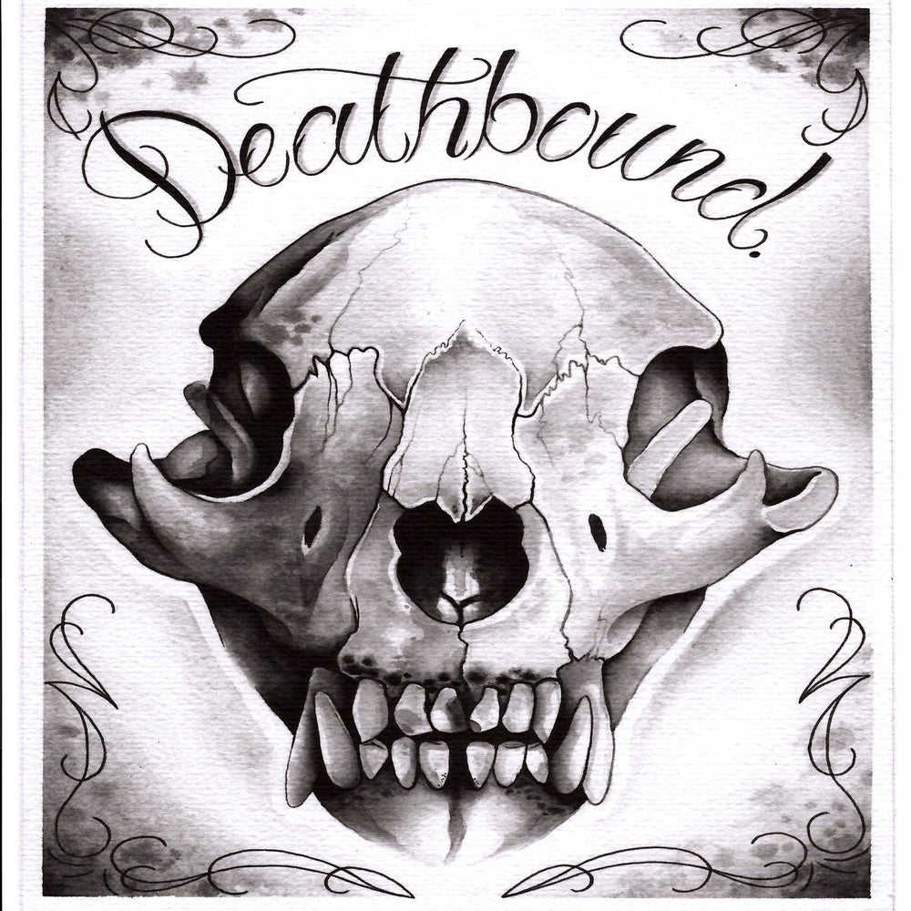 Bear Skull Tattoos Design