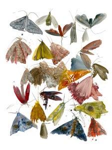 Image of Allyson Reynolds - Moths 1