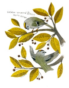 Image of Golden Crowned Kinglet - 11 x 14 inch Archival Inkjet Print (Giclée)
