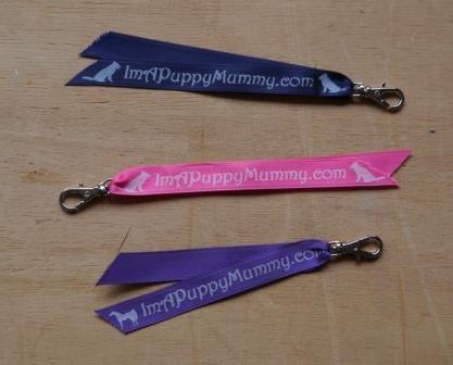 Image of Zipper/Keyring Tag