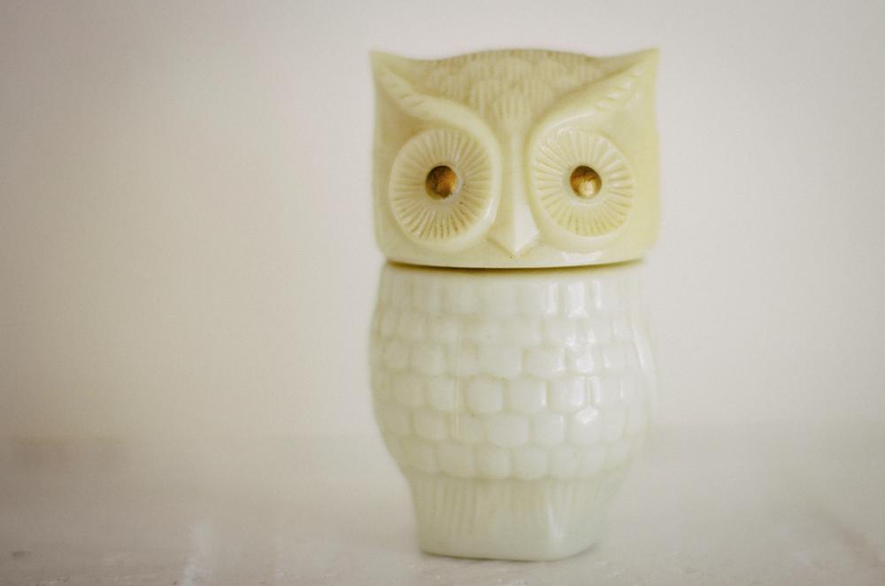 Image of Avon Owl