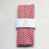 Image of Red & White Twist Ties