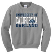 Image of UCO Crewneck Grey