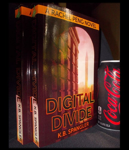 Image of Digital Divide - signed copy