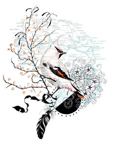 Image of The Cromer waxwing-hand printed screen print edition of 24