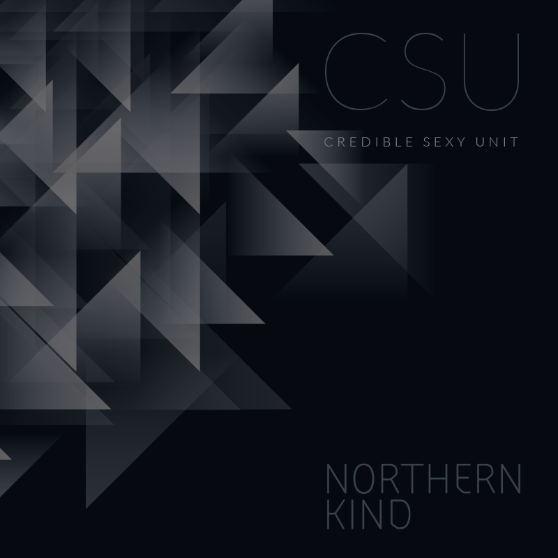 Image of NORTHERN KIND | CREDIBLE SEXY UNIT - CD ALBUM