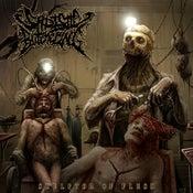 Image of Sadistic Butchering - Sculptor Of Flesh
