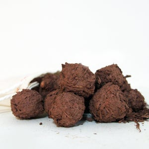 Image of ca native flora seed bombs