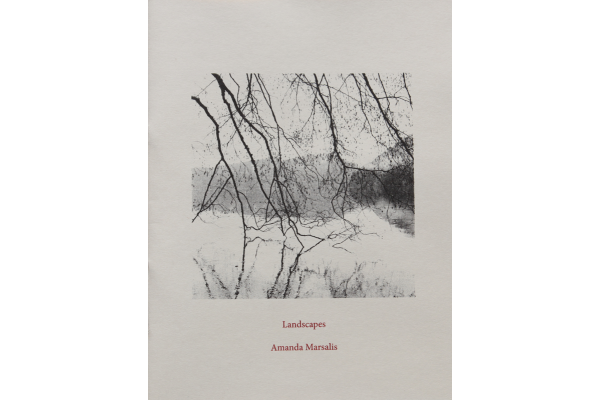 Image of Golde Spike Press Zine : Landscapes