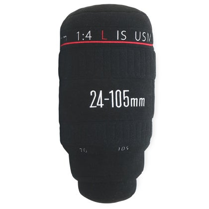 Image of C 24-105mm Pillow   Sold Out
