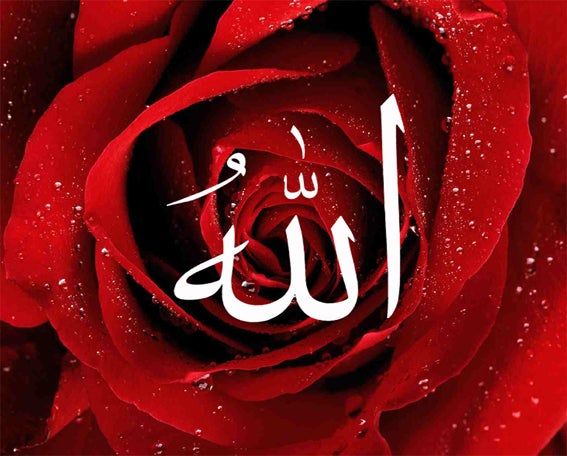 Allah Rose Canvas 1clickart
