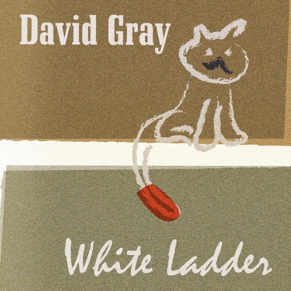 Image of White Ladder Art Print