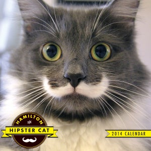 Image of Hamilton The Hipster Cat 2014 Calendar!