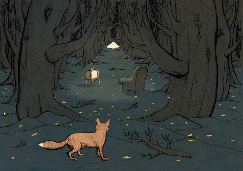 Image of FOX IN WOODS