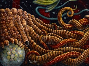 """Image of """"SEAPODS"""", 20 x 20"""" Open Edition Giclee Print"""