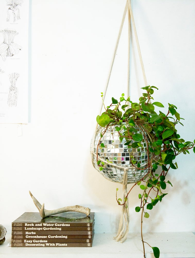Image of DISCO BALL PLANTER