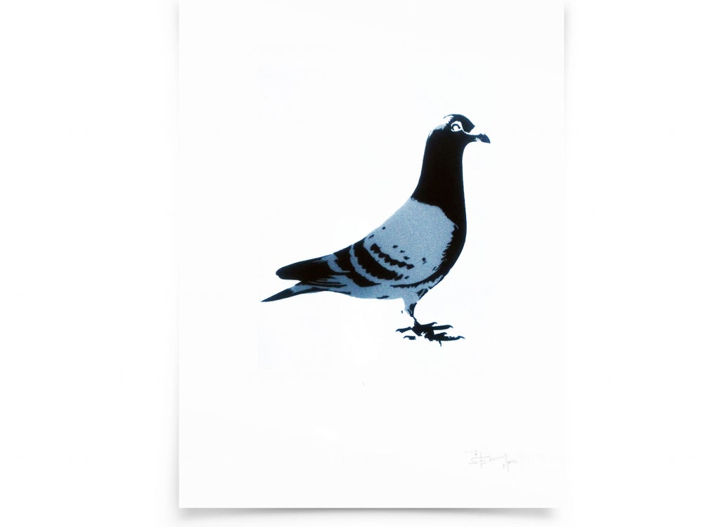 Image of Pigeon on paper - screenprintt