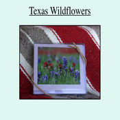 Image of Texas Wildflower Collection
