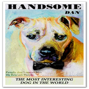 Image of Handsome Dan: The Most Interesting Dog in the World