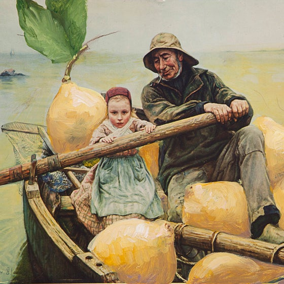 Image of Holly Topping- Row Boat With Lemons- limited editioned print