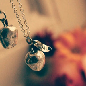 Image of Windfall lucky silver apple necklace