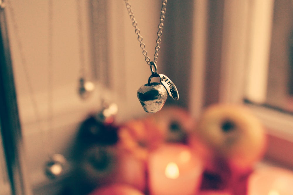 Image of Windfall lucky silver apple necklace - LAST ONE