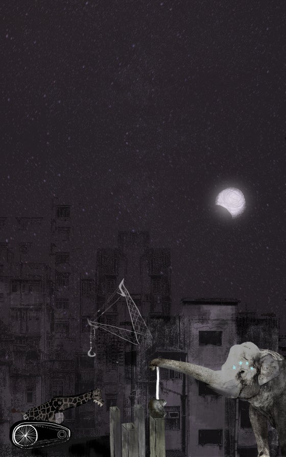 Image of Stargazer Poster