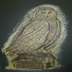 Image of Reconstructed Snowy Owl Timber Green