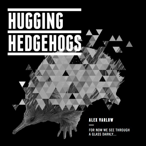 Image of HUGGING HEDGEHOGS (Front Cover)