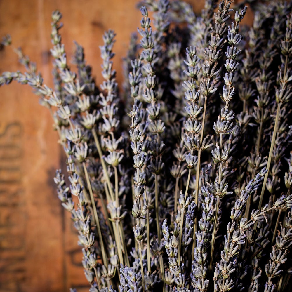 Image of Dried Lavender bundle