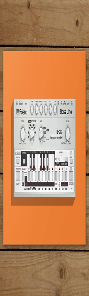 Image of TB-303 Mounted Canvas