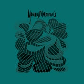 "Image of Young Mammals -""Build a House"" 7"""