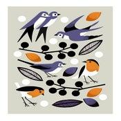 Image of Garden Birds
