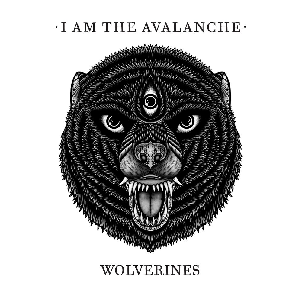 Image of Wolverines CD