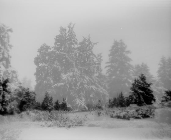 Image of Winter