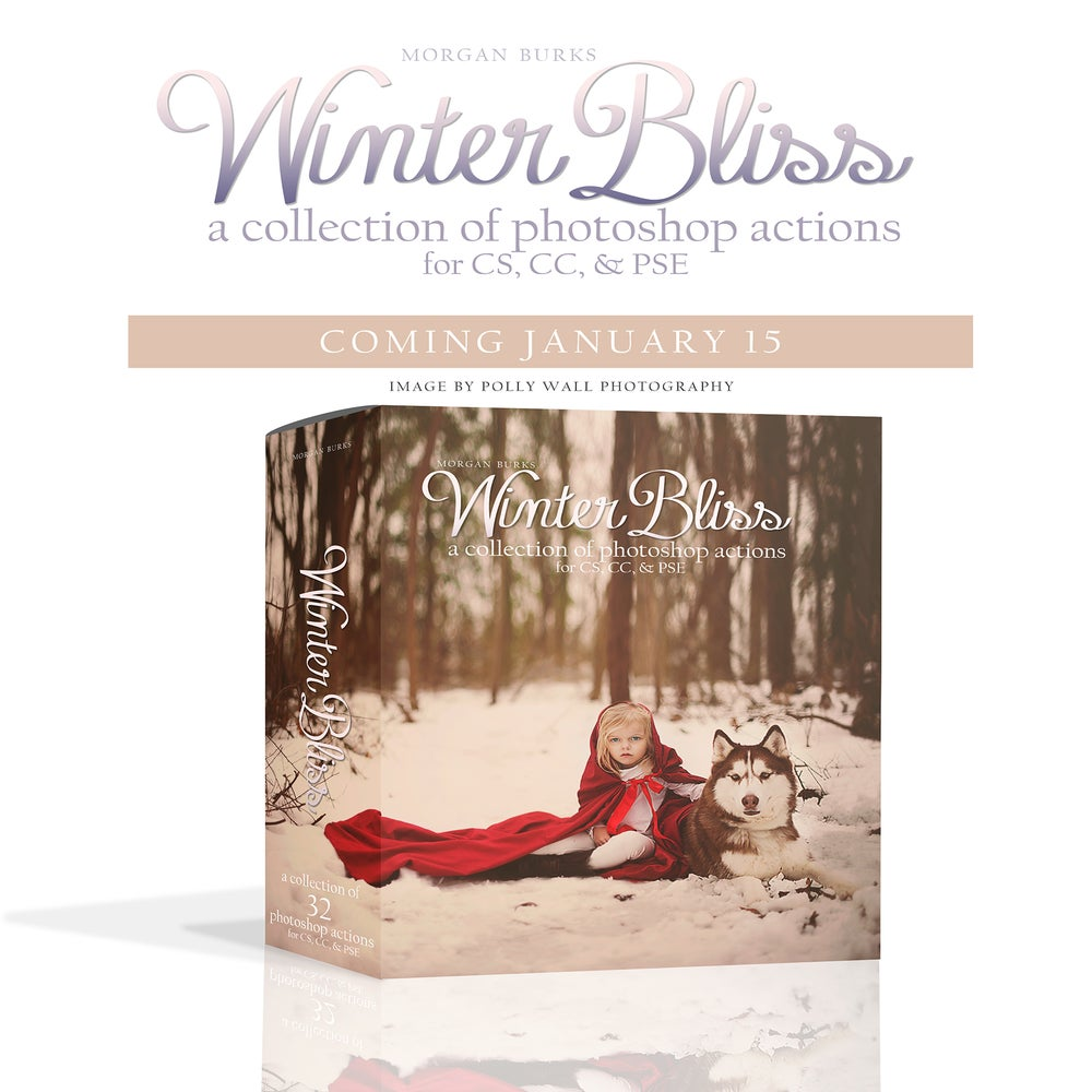 Image of MB Winter Bliss Action Collection