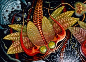 """Image of """"MICROVERSE 1"""", 25 x 20"""" Large Open Edition"""