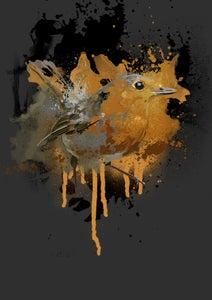 Image of Robin - Alu-Dibond | 29,7 x 21 cm